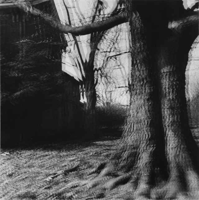 Ralph Eugene Meatyard  | Untitled («Motion-Sound Landscape»)